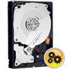 Disque Dur 1To Western Digital RE Sata2 64Mo
